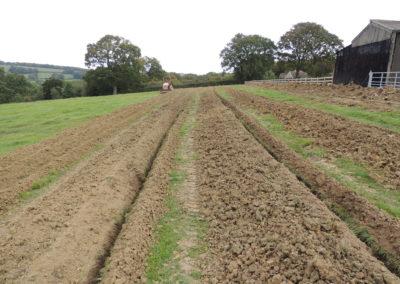 ground source (4)